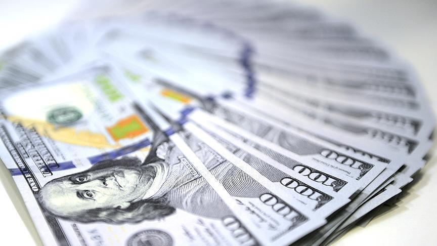 دلار ۴۲۰۰ تومانی به دست وارد کنندگان نرسید